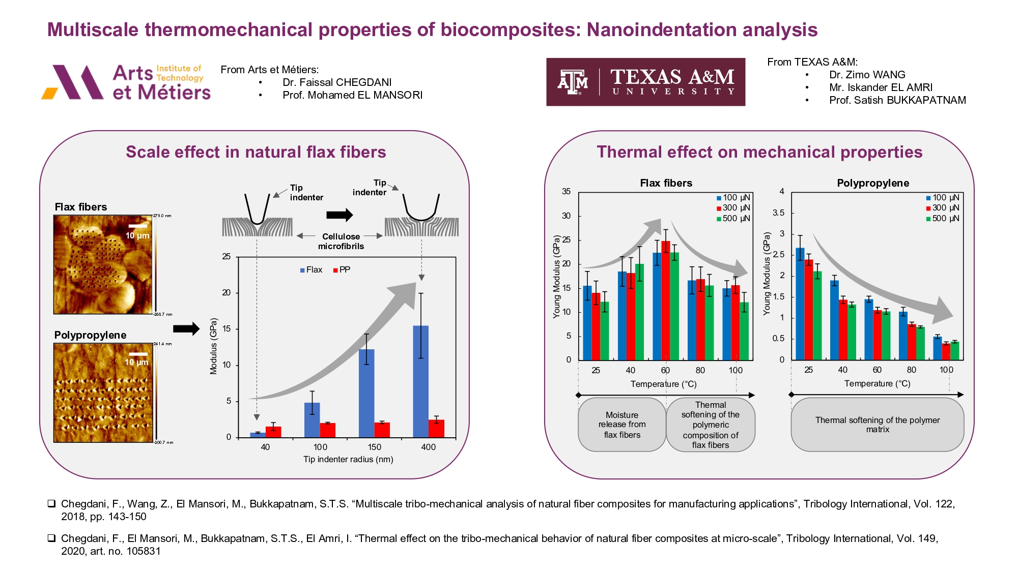 Multiscale thermomechanical properties of biocomposites: Nanoindentation analysis | Events AM2